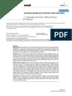PCR Detection of Plasmodium Falciparum in Human Urine an Salive Samples