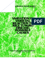 IRPS 32 Variation in Varietal Reaction to Rice Tungro Disease