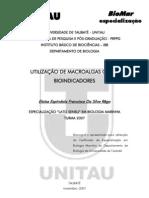 Silva-Rego2007 (1)