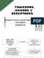 Anticuerpos Ligandos y Receptores