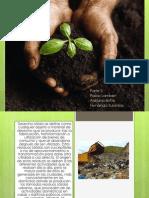Trabajo de Sociales Medio Ambiente