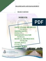 Mobilink Report