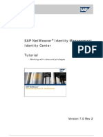 SAP Netweaver - Identity Management