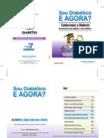 Conhecendo Diabetes - Sou diabético e agora?
