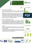 Newsletter Fibria - 4th edition