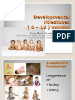 Developmental Milestones 6 Months