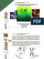Fundamentos-de-PCR