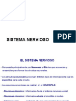 Clase 2 Sistema Nervioso Central y Periferico
