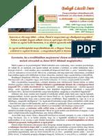 baloghlszlimre-elhivatottsgomazegytitknakmegosztsa-110310113533-phpapp02