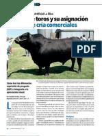 Elección de toros y su asignación en hatos de cria comerciales
