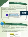 Presentacion Clase7
