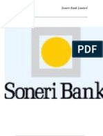 Final Report of Soneri Bank