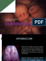 Embarazo Gemelar Final