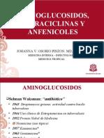 Aminoglucosidos Tetraciclinas y Cloramfenicol