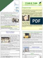 """Publicação Diocesana - """"Vinde e Vede"""" - N.º 7"""