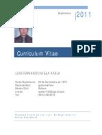 CV LUIS MEJIA ESPAÑOL sep  2011