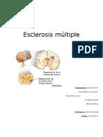 Esclerosis Multiple 2