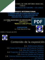 DIPLOMADO COLITUR - SNIP 2011 - Cap+¡tulo I - MARCO CONCEPTUAL