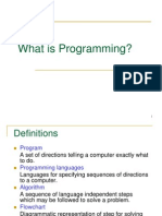 1 What is Programming PPT