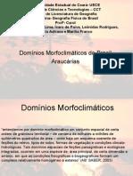 araucria-1213448013343436-8