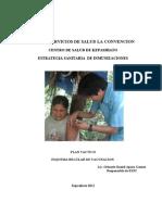 Plan Tactico Inmunizaciones Kepashiato 2011
