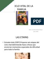 ciclovitaldelafamilia-090723201501-phpapp02
