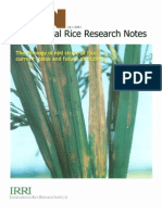 International Rice Research Notes Vol.26 No.1