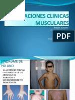 Correlaciones Musculares - b.l