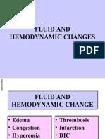 Fluids&Hem