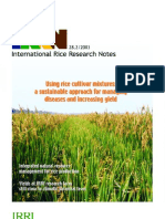 International Rice Research Notes Vol.28 No.2