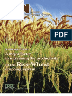 International Rice Research Notes Vol.30 No.1