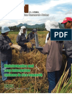 International Rice Research Notes Vol.31 No.1
