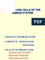 Lecture 13 - Organs and Cells of the Immnue System