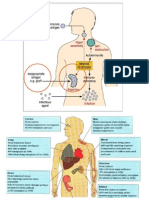 Lecture 27 - Transplantation