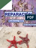 Reparacion Obst 2007