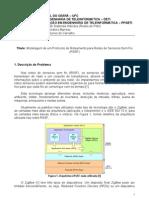 Projeto Conclusão de Disciplina (relatório) - RdP