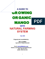 15766222 Guide to Growing Organic Mango With Natural Farming System