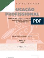 is Curriculares Para o Ensino de Profissional de Artes