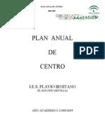 Plan Anual 08_09