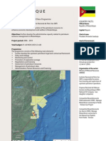 Norwegian Oil for development in Mozambique1