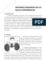 Comisión Qx Endocrina-Síndromes Origin a Dos en Las Suprarrenales(30!10!07)Soria
