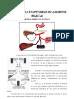 Comisión Endocrino-Fisopatología y Etiopatogenia de La DM (16!11!07) Meoro