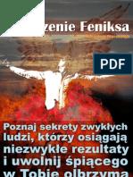 Odrodzenie Feniksa eBook, Darmowe Ebooki, Darmowy PDF, Download