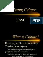 Culture PP