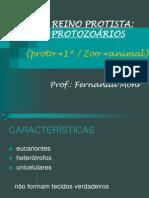 Reino-Protista-Algas-e-protozoários