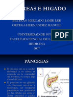 Pancreas e Higado Parcial