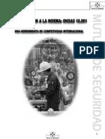 Manual - Introduccion a La Norma Ohsas 18001(2)