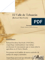 Valle de Tehuacán