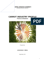 Carrot Industry Profile