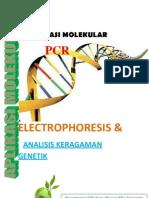 Aplikasi Molekuler PCR ELECTROPHORESIS & Analisis Keragaman Genetik